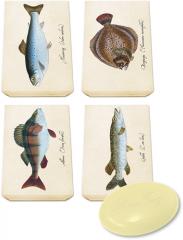 Sköna Ting Gästeseife in Pappschachtel mit Steinbutt, Barsch, Hecht oder Forellenmotiv, 1 x 25g
